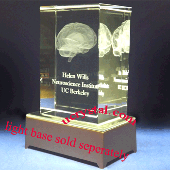 3d crystal human brain model, anatomy neuroanatomy, large 2